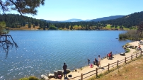 Lake Stroll